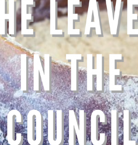 The Leven In The Council banner